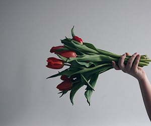 bouquet, flower, and hand image