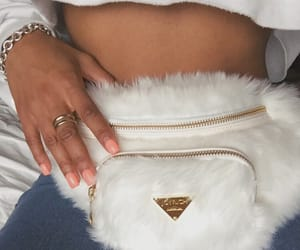 white, fur, and gold image