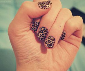 nails, leopard, and animal print image