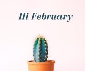 boho, february, and hello image