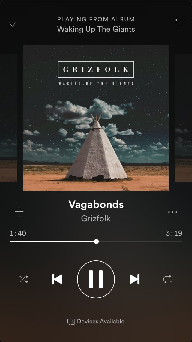 music and grizfolk image