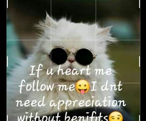 Best, follow, and channel image