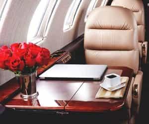 luxury, rose, and plane image