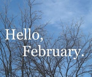 february, hello, and tree image