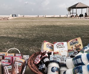 family, picnic, and food image