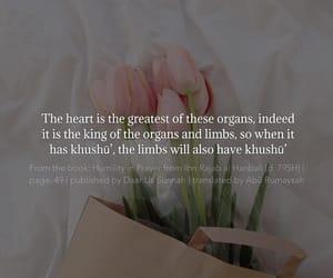 faith, flower, and heart image