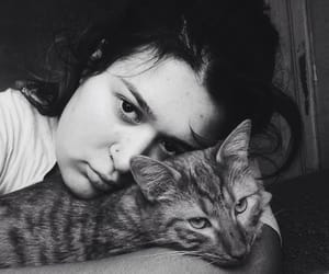 black and white, bw, and cat image