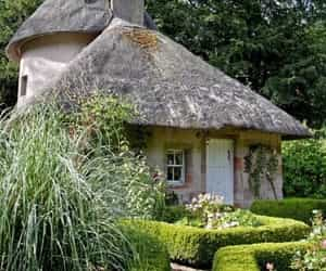 cottage, garden, and green image