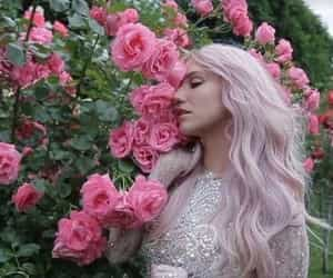kesha, singer, and kesha rose sebert image