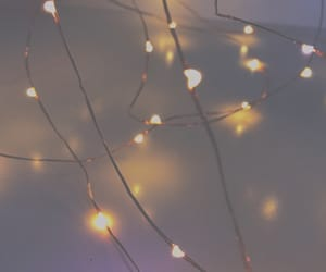 aesthetic, fairylights, and lights image