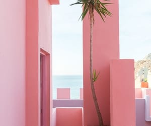 pink, summer, and aesthetic image