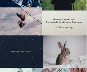 aesthetic, hermione, and luna image