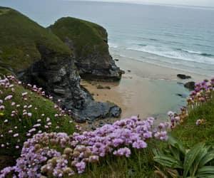 beach, Cornwall, and nature image
