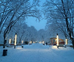 moscow, natural, and winter image