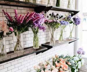 flowers, nature, and shop image