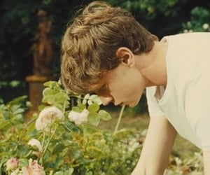 aesthetic, boy, and nature image