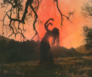 nature, witch, and sunset image
