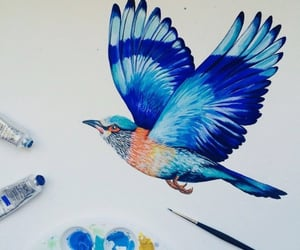 art, water colour, and bird image