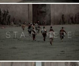 tumblr, fondo, and maze runner image