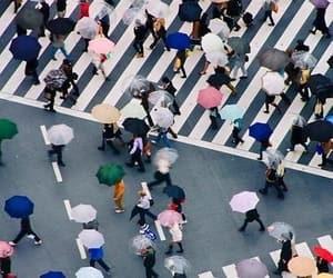 japan, rain, and people image