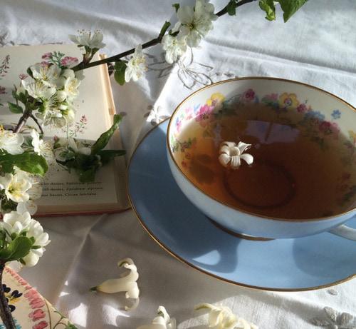 tea, book, and coffee image