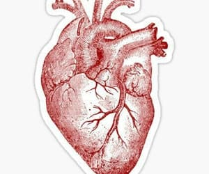 draw, heart, and hearts image