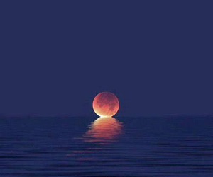 moon, sea, and night image