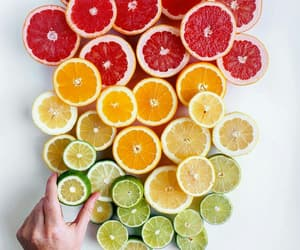 circles, colorful, and food image