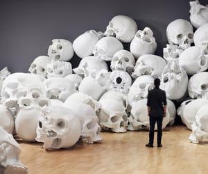 bones, glass, and bonheur image