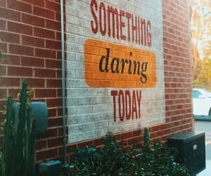 daring, inspiration, and words image