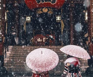 snowfall and winter image