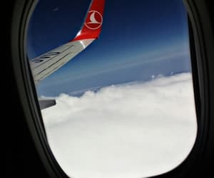 fly, turk, and turkish airlines image