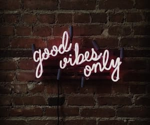 vibes, quotes, and neon image