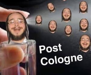 funny, memes, and post malone image