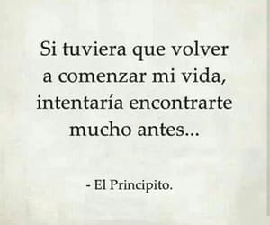 amor, frase, and quote image
