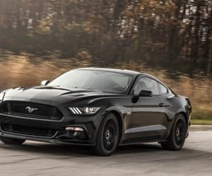black, Hot, and mustang image
