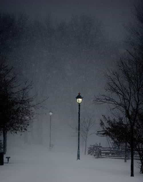 winter, snow, and night image