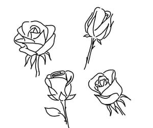 rose, flowers, and outline image