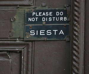 siesta, quotes, and door image