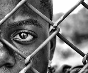 black and white, fence, and photography image
