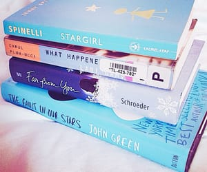 article, books, and stargirl image