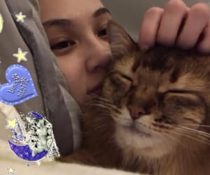 cat, kiko, and kikomizuhara image