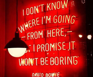 affirmation, david bowie, and neon image