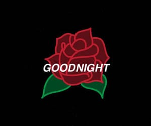 goodnight, quote, and red image