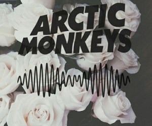 arctic monkeys, roses, and wallpaper image
