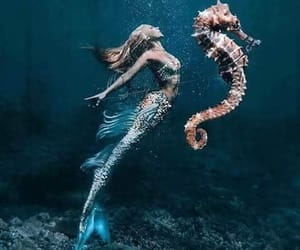 mermaid, beautiful, and fantasy image