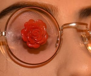 rose, aesthetic, and glasses image