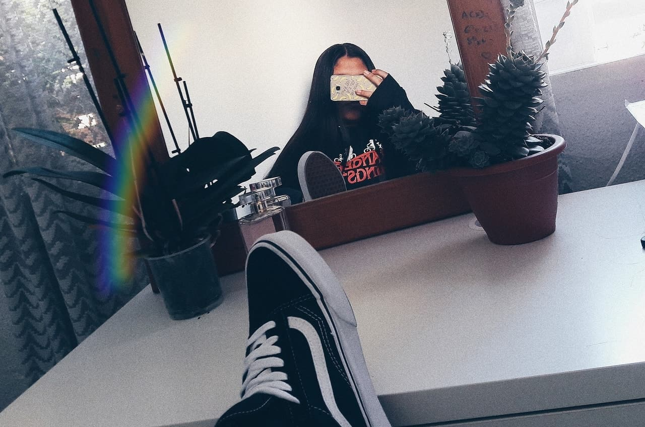 plants, raimbow, and tumblr image