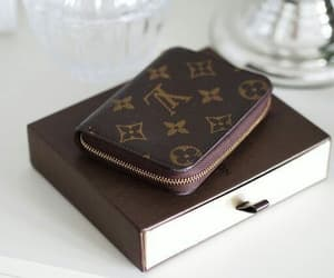 chic, LV, and louisvuitton image
