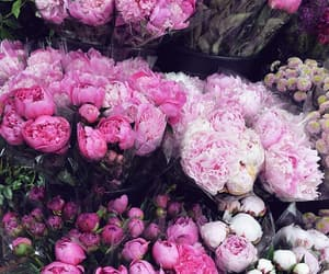 flowers, inspiration, and bunch of flowers image